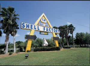 Shell Factory North Ft Myers Fl